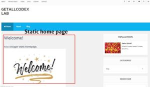 How to Hide The Blogger Posts From Homepage: How to Create Static Home Page and Blog Page in Blogger
